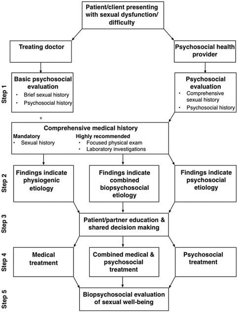 Contemporary treatment of sexual dysfunction reexamining the biopsychosocial treatment steps ccuart Gallery
