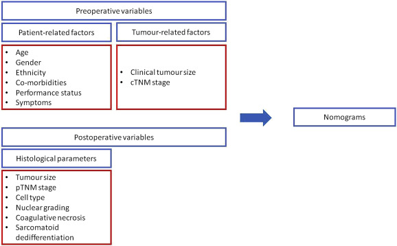 Introduction To Small Renal Tumours And Prognostic Indicators Sciencedirect