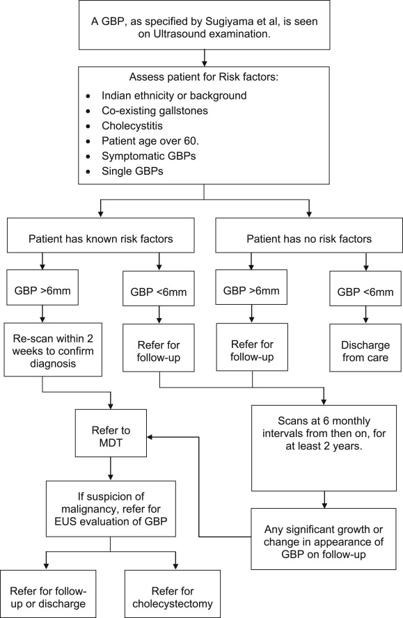 The risk of malignancy in ultrasound detected gallbladder polyps: A