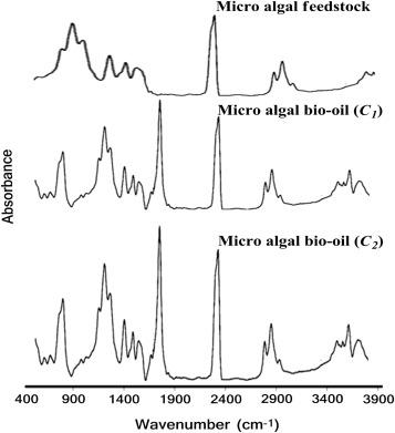 Potential assessment of micro algal lipids: A renewable