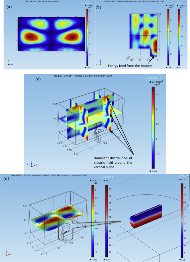 Simulation study of parameters influencing microwave heating