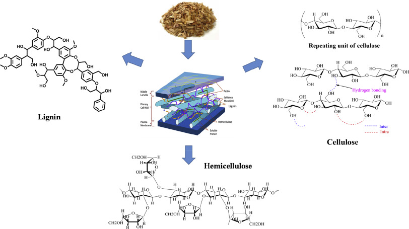 Utilization of lignin: A sustainable and eco-friendly ... on