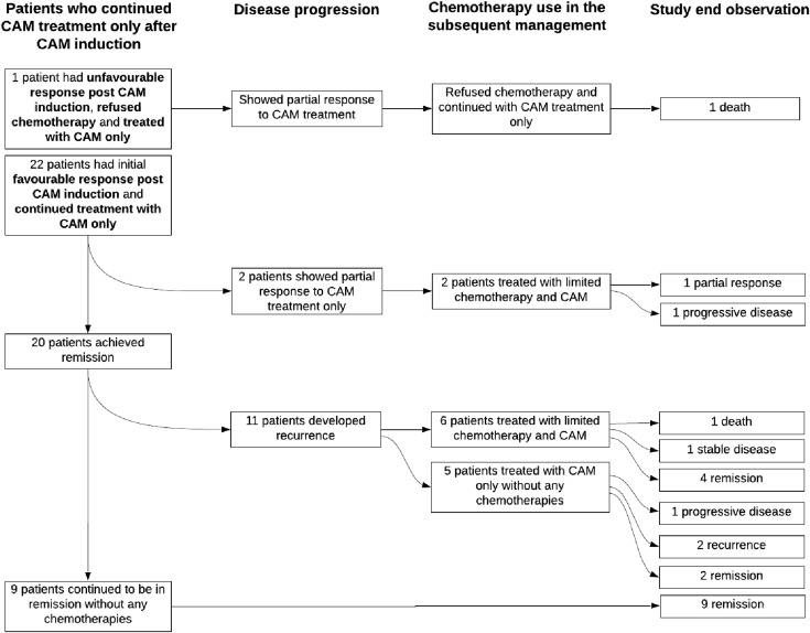 Survival Of Patients With Advanced And Recurrent Ovarian Cancer Treated Using Integrative Medicine In Malaysia A Case Series Sciencedirect