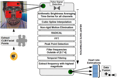 Robust remote heart rate estimation from multiple