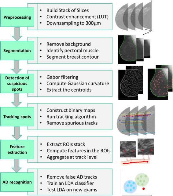 Kovalev algoritmusa: leírás, lényeg, jellemzők és vélemények