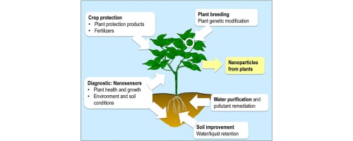 Agricultural Nanotechnologies What Are The Current Possibilities