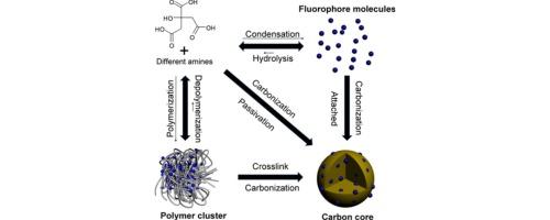 Beyond Bottom Up Carbon Nanodots Citric Acid Derived Organic