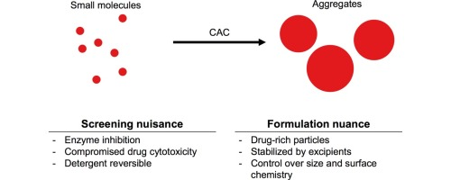 Colloidal aggregation: From screening nuisance to