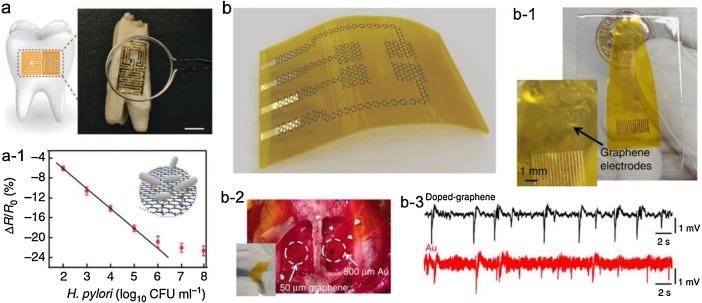 Recent progresses in graphene based bio-functional