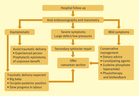 Risk factors and management of obstetric perineal injury
