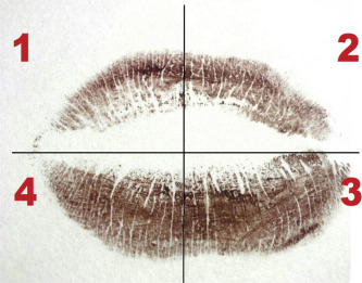 Image result for no two lip impressions are the same