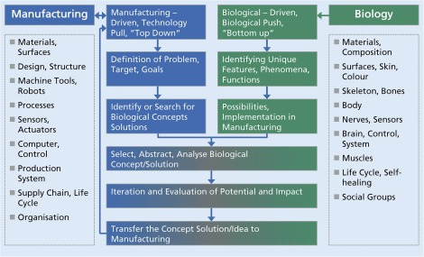 Biologicalisation Biological Transformation In Manufacturing
