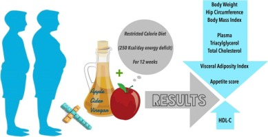 Beneficial effects of Apple Cider Vinegar on weight