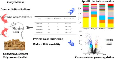 Ganoderma Lucidum Polysaccharide Alleviating Colorectal Cancer By Alteration Of Special Gut Bacteria And Regulation Of Gene Expression Of Colonic Epithelial Cells Sciencedirect