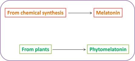 Phytomelatonin, natural melatonin from plants as a novel dietary