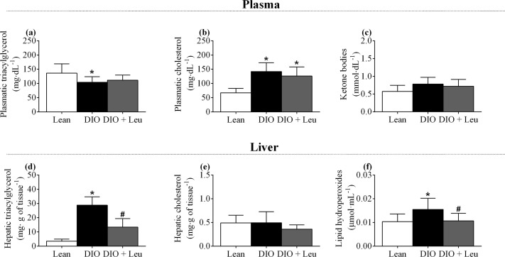 Leucine increases muscle mitochondrial respiration and