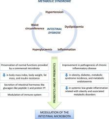 diabetes mellitus tipo 1 pronóstico para colon