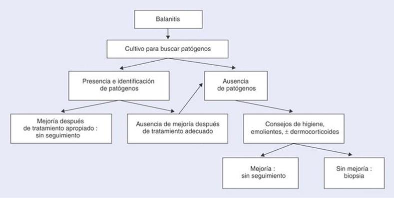 Tratamiento para balanitis alergica