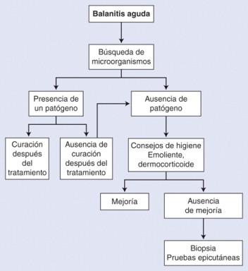 balanitis diabetes tratamiento