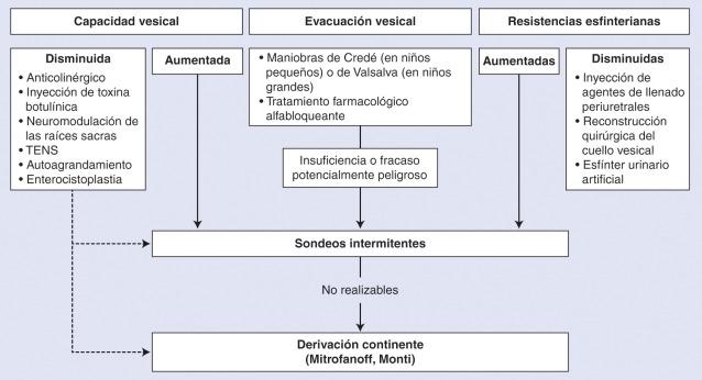 cálculos en la próstata y la vejiga zip pdf