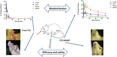 In vivo evaluation of the efficacy, toxicity and biodistribution of