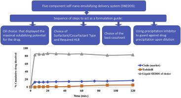 II类水难溶性药物的溶出的改良,通过开发五种成分自纳米乳化药物递送系统