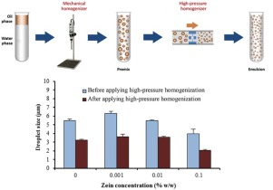 Effect of high-pressure homogenization on stability of