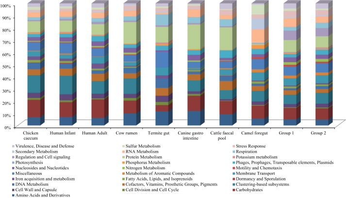 The camel faecal metagenome under different systems of