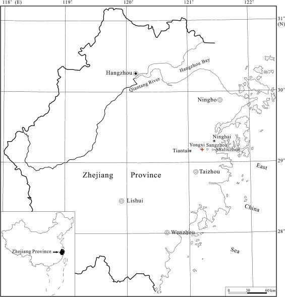 Vein Density Of Angiosperms As A Paleoclimate Proxy A Case Study