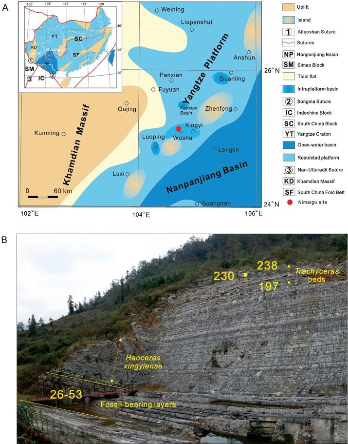 Middle Triassic Xingyi Fauna Showing Turnover Of Marine Reptiles - Xingyi map