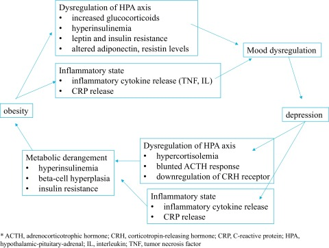 Study Depression Obesity Hypertension >> The Interface Of Depression And Obesity Sciencedirect