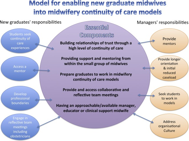 what are the roles and responsibilities of a midwife