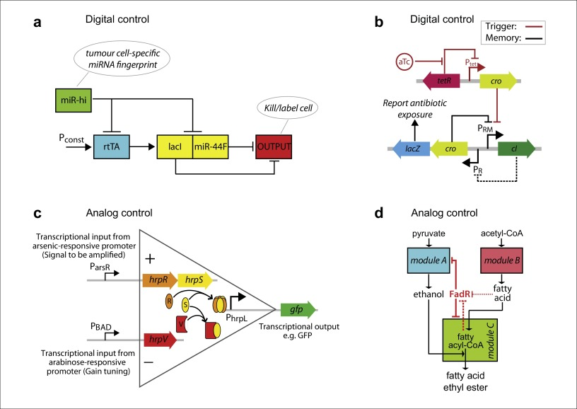 Designer cell signal processing circuits for biotechnology ...