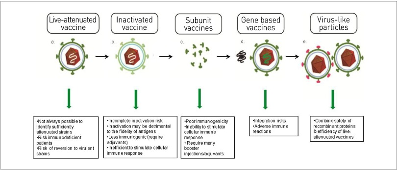 Production Of Virus Like Particles For Vaccines Sciencedirect
