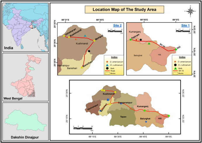 Study Of Phytosociology And Ecology Of Naturally Growing Ocimum - Balurghat map
