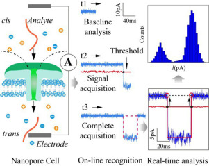 Real-time Event Recognition and Analysis System for Nanopore Study