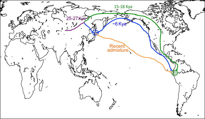 Insights into the origin of rare haplogroup C3* Y