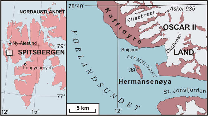 The morphology of peat bog surfaces on Hermansenøya, NW