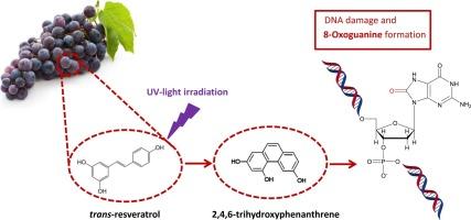 2 4 6 Trihydroxyphenanthrene A Trans Resveratrol Photoreaction