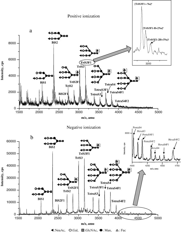 Mass Spectrometric And Linear Discriminant Analysis Of N Glycans Of