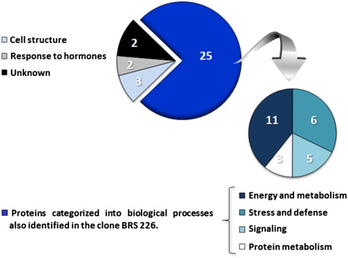 Proteomic analysis of responsive stem proteins of resistant and