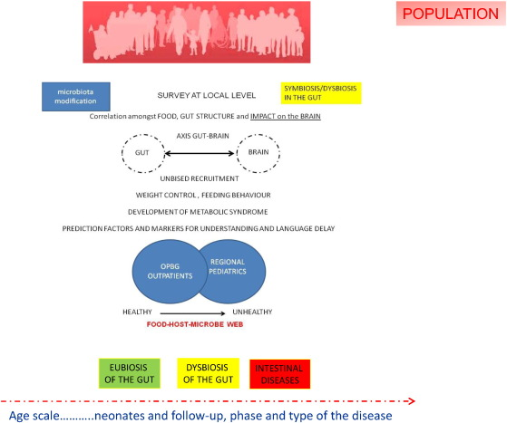 Foodomics as part of the host-microbiota-exposome interplay