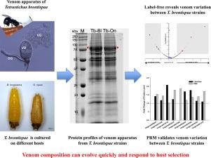 Combination of label-free quantitative proteomics and