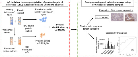 Identification Of Tumor Associated Antigens With Diagnostic Ability Of Colorectal Cancer By In Depth Immunomic And Seroproteomic Analysis Sciencedirect