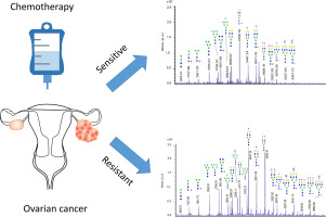 N Glycome Changes Reflecting Resistance To Platinum Based Chemotherapy In Ovarian Cancer Sciencedirect