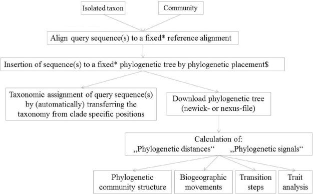 A Phylogenetic Framework For The Kingdom Fungi Based On 18s Rrna