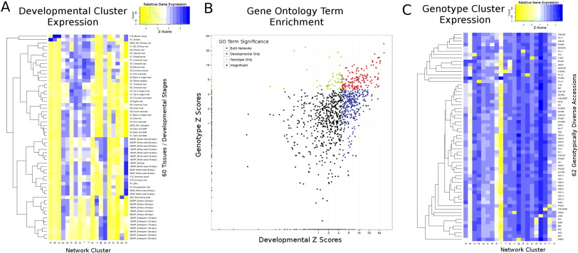 Unraveling Gene Environment Interaction >> Unraveling Gene Function In Agricultural Species Using Gene Co