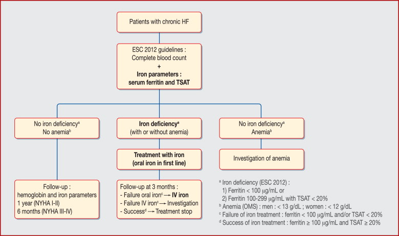 Assessment of iron variables and treatment of iron deficiency in chronic  heart failure. ESC: European Society of Cardiology; HF: heart failure; ...