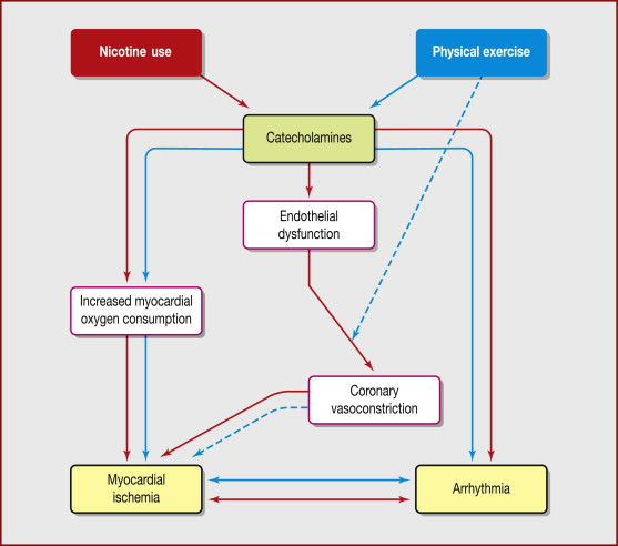 Smokeless tobacco, sport and the heart - ScienceDirect