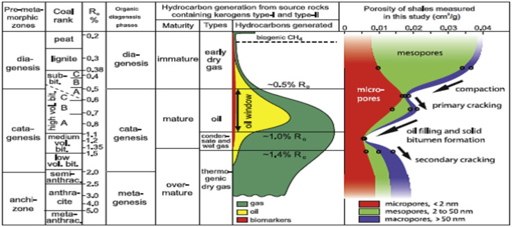 Natural gas origin, composition, and processing: A review
